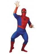 Spiderman Adult Costume