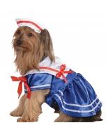 Pet Costume Sailor Girl Md