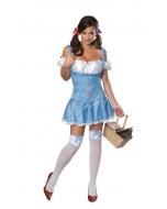 Wiz Of Oz Dorothy Adult Large