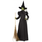 Witch Classic Deluxe Adult Lg