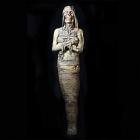 Monster Mummy Prop