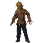 Scarecrow Child 12-14