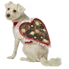 Chocolate Box Dog Costume Xs