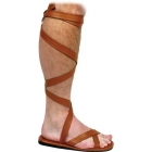 Shoe Roman Sandal Men Md