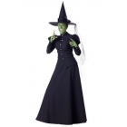 Wicked Witch Adult Small
