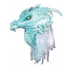 Artic Dragon Premiere Mask