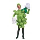 Grapes Green Child Costume