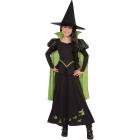 Wizard Oz - Wicked Witch Md