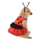 Pet Costume Lovely Ladybug Lg