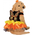 Pet Costume Butterfly Small