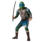Teenage Mutant Ninja Turtles Leonardo Child Small