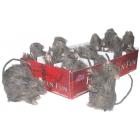 Rat Assortment