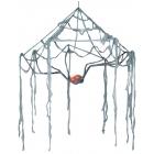 Spider Canopy Web Eyes Light