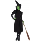 Elphaba Witch Adult Small